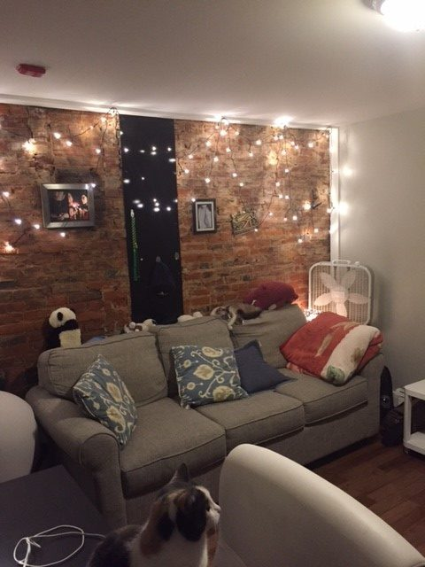 311 S. 16th living room